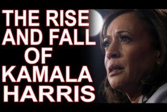 How The Black Media Destroyed Kamala Harris!