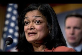 """Jayapal Attacks Tulsi Gabbard's Present Vote As """"Disappointing Copout"""" And Not Courageous"""