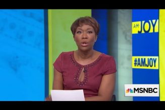 Joy Reid Apologizes to LGBTQ, Now It's #FBA's Turn!  #Tangibles2020