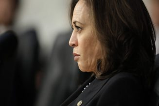Kamala Harris Bows Out of Presidential Bid ~ All Skin Folk Ain't Kin Folk! | Dr. Rick Wallace