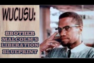 MALCOLM X AND HIS OUTLINE FOR BLACK LIBERATION