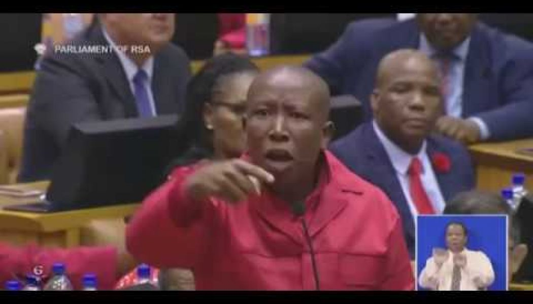 Malema in parliament yesterday