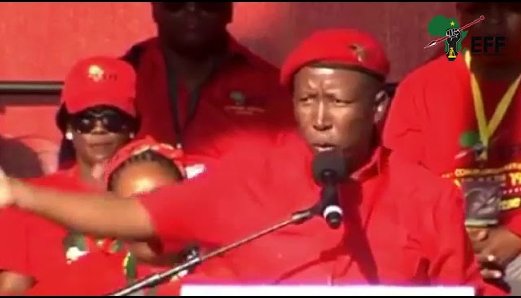 Malema – Indian treatment of Africans