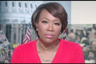 MSNBC's Joy Anne Reid Makes Massively Embarrassing Blunder | Does MSNBC Employ Fact Checkers?