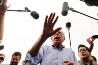 """Paid DNC Operative Attacks Bernie Sanders On MSNBC, """"The Left Leaning Network"""""""