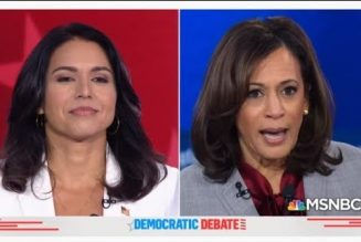Tulsi Gabbard Burns Kamala Harris' Failure In Ice Hot Style | Kamala's Supporters Lose It