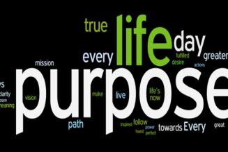 The Power of Purpose! The Unbelievable Force of Self-Awareness   Dr. Rick Wallace