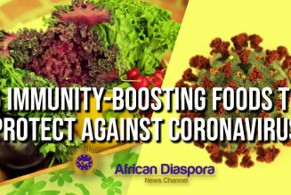 6 POWERFUL Immunity Boosting Foods To Protect Against The Coronavirus