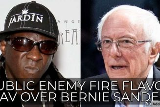 PUBLIC ENEMY FIRE FLAVOR FLAV OVER BERNIE SANDERS