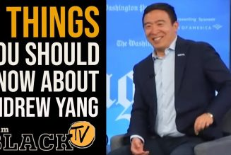 6 Things You Should Know About Andrew Yang | Tim Black