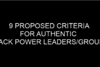 9 Proposed Criteria for Black Power Leaders & Groups