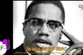 Africa's PROBLEM is House Negro Presidents! 😩#MalcolmX #AfricanMinute