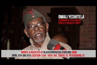 Black militants to invade the system white rulers have created to exercise white political power!