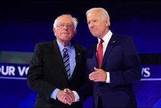 It's Time TO Tell The Truth Re: Bernie Sanders' Endorsement of Joe Biden