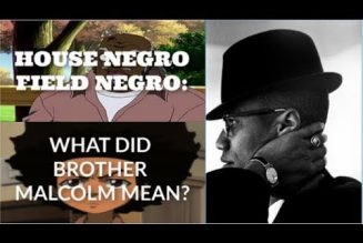 HOUSE NEGRO FIELD NEGRO: WHAT DID MALCOLM X MEAN?