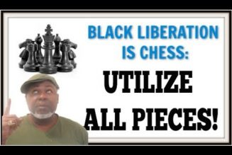 Liberation is a Chess Game Utilize All Pieces!