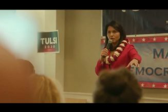 Mic Taken From Tulsi Supporter For Calling Out Rigged Elections