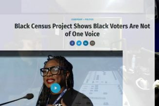 Opinion on new study Black Census Study, Final Call and Alicia Garza