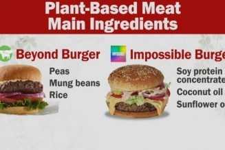 The Definition Of Burger And Why Plant Meat Is Great
