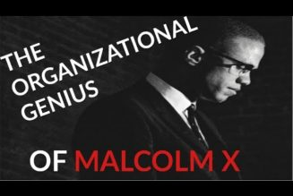 The Organizational Genius of Malcolm X (With Proof)