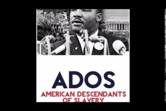 Why some believe ADOS  is creating division amongst colored-people/ We talk reparation