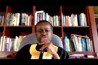Prof. PLO Lumumba Lecture on the History of Pan-Africanism (EFF Online Lecture Series)