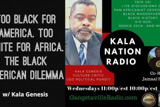 Too Black For America. Too White For Africa. The Black American Dilemma w/ Kala Genesis