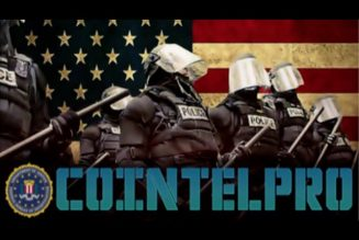 What is Neo-COINTELPRO?