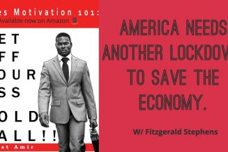 America Needs Another Lockdown To Save The Economy w/ Fitzgerald Stephens