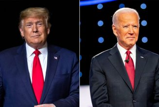 Biden Backers Call To Cancel Debates, Greg Palast Answers Why Democrats Don't Challenge Cheating