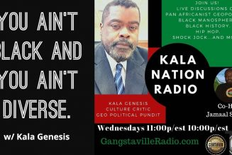 You Ain't Black And You Ain't Diverse. w/ Kala Genesis