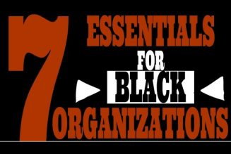 7 Essentials for Black Organizations