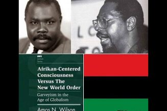 Dr. Amos Wilson The Validators of Truth & Black Leadership
