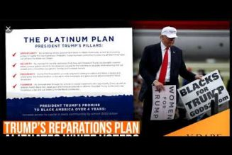 TRUMP PLATINUM PLAN IS TRASH |   REPARATIONS CHECK PAYMENT