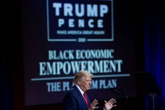 """Trump's """"Platinum Plan"""" Speaks to His base More than to Us!"""