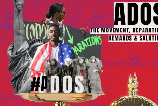 #ADOS, the movement, reparations and demands during a major election year