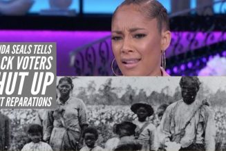 Amanda Seals Tells Black Voters Shut Up About Reparations And Vote Joe Biden and Kamala Harris