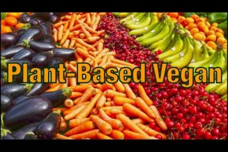 The 3 Levels to Plant-Based Veganism (Plant-Based Teachers)