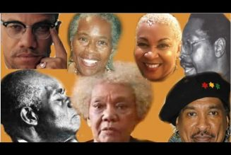 THE 5 ROLES OF BLACK LIBERATION INTELLECTUALS