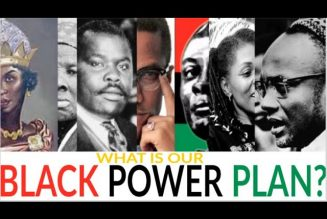 WHAT IS OUR BLACK POWER PLAN?
