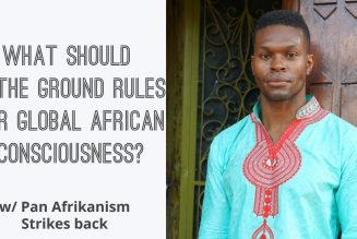 What Should Be The Ground Rules For Global African Consciousness? w/ Pan Afrikanism Strikes Back