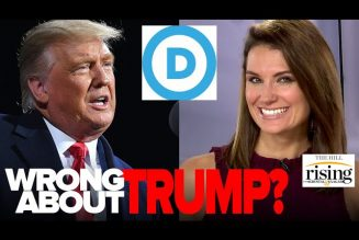 Krystal Ball: Will Liberals Ever Admit How Wrong They Were About Trump?
