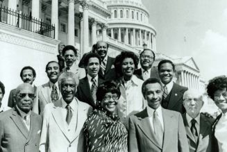 Message to The Black Voter & The Congressional Black Caucus