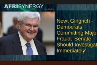 Newt Gingrich – Democrats Committing Major Fraud, 'Senate Should Investigate Immediately'