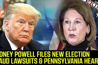 Sidney Powell Files New Election Fraud Lawsuits & The Pennsylvania Hearing