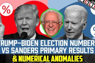 Trump-Biden Election Numbers VS Sanders Primary Results & Numerical Anomalies