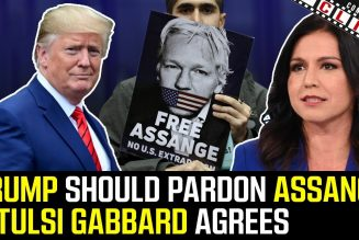 Tulsi Gabbard & Others Call On Trump To Pardon Assange And Snowden