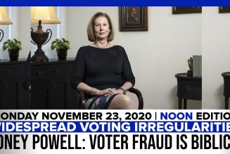 WIDESPREAD VOTING IRREGULARITIES SIDNEY POWELL: FRAUD IS BIBLICAL | The Stewart Alastair Edition