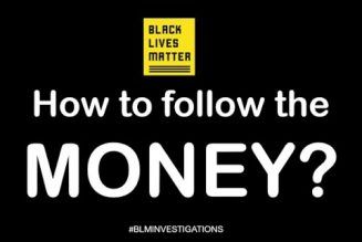 Black Lives Matter: How to follow the money?