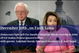 Democrats NOW Fight Left For Smaller Stimulus. Blacks Lost Big In 2020. HUGE Indian Protest Ignored